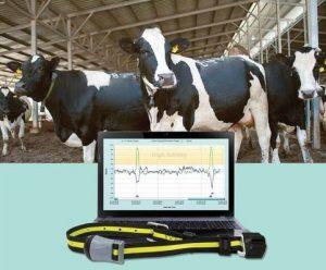 Best Cattle Management Software